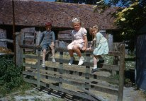 Children on farm gate. Hardwicke Knight photographer.